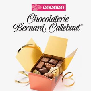 Raise sweet funds with Cococo Chocolatiers